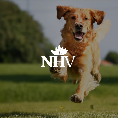 NHV Natural Pet Products